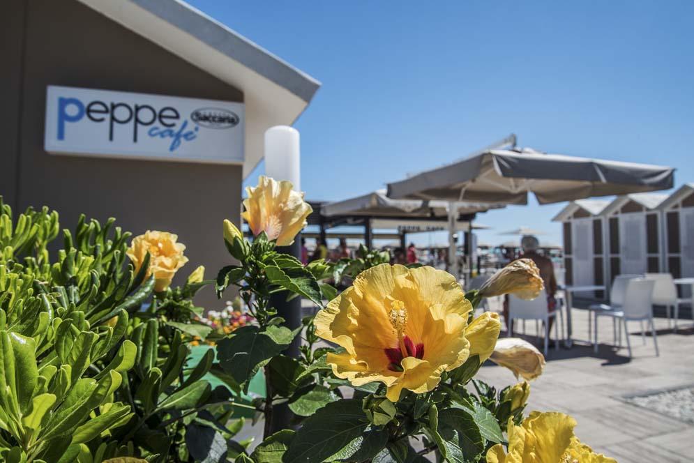 summer 202 peppe